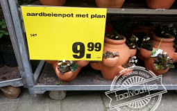 aardbeienpot met plan