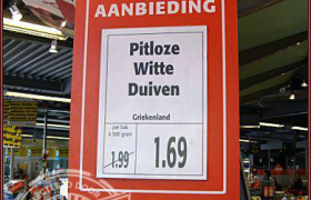 pitloze witte duiven