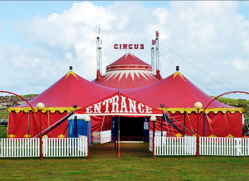 Woordweetje: Wat een circus!