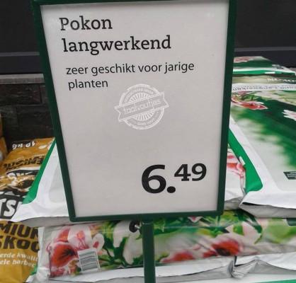 jarige planten