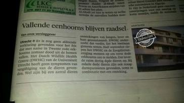 Het Noordhollands Dagblad ziet ze vliegen