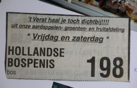 Hollandse bospenis