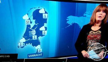 Ik ga direct naar Alkmaar verhuizen.