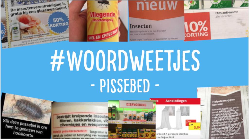 Taalvoutjes' #Woordweetje: Pissebed