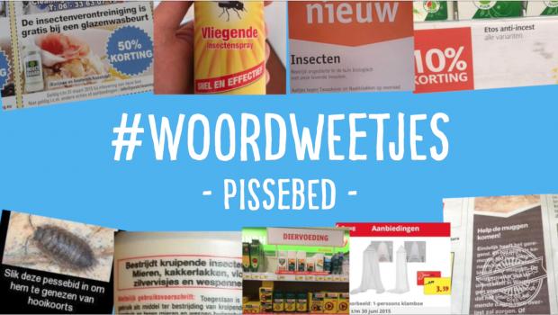 Woordweetje in beeld: Pissebed