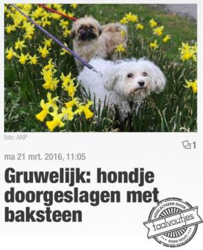 Hondsdolheid?